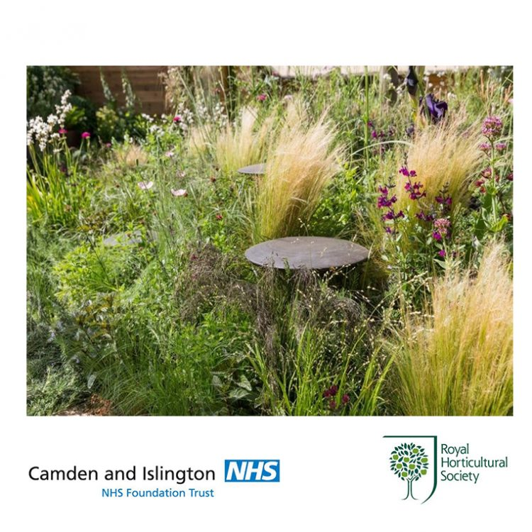 RHS Feel Good Garden to be gifted to NHS Camden & Islington