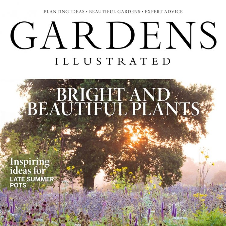 Matt gives design tips in Gardens Illustrated Series